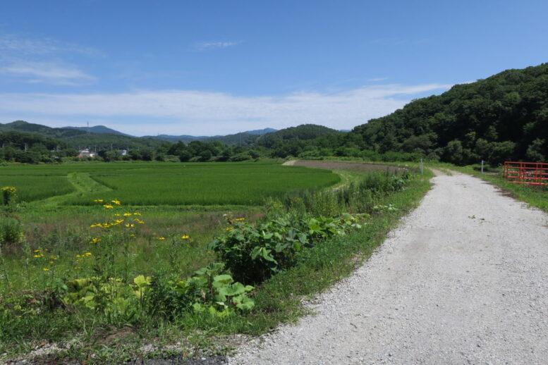 北海道観光おすすめ