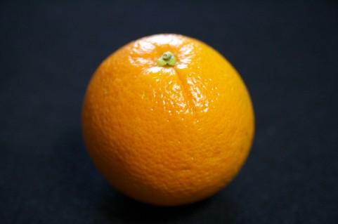 フランシスベーコンとオレンジ色 絵画鑑賞