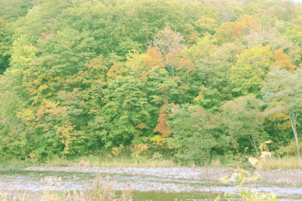 秋が深まってきました。渓相は、また美しさが増します。